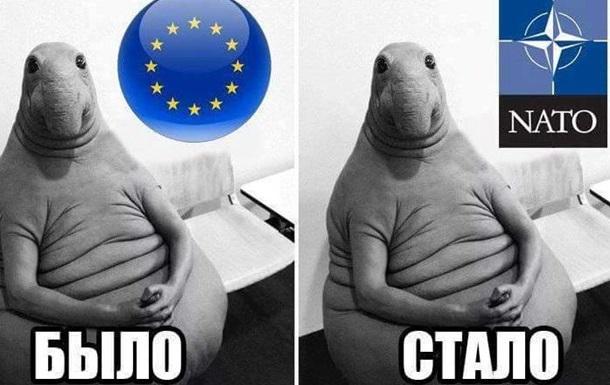 Шило на мыло, а ЕС на НАТО – было бы счастье, но нет результата