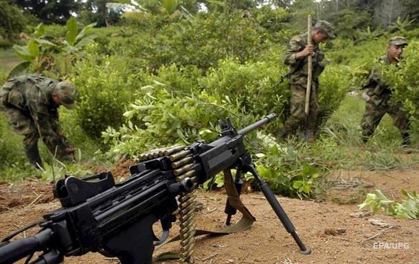 В Колумбии зафиксированы рекордные плантации коки