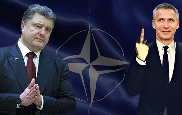 5 вопросов о вступлении Украины в НАТО, о которых все молчат