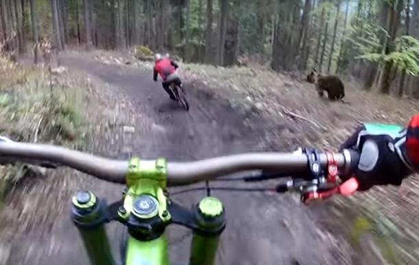 видео заснял парочку в лесу велосипедистов