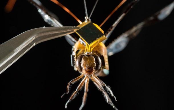 Ученые показали первую вмире стрекозу-киборга