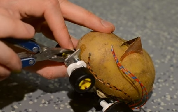 Энтузиаст превратил картофелину на воспитанника на колесах
