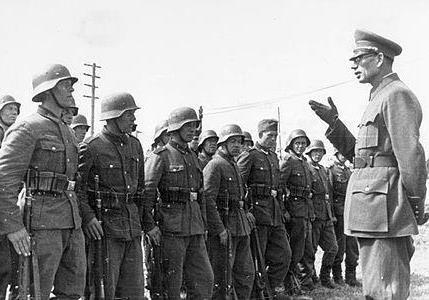 Сколько миллионов русских служили в СС и Вермахте ?