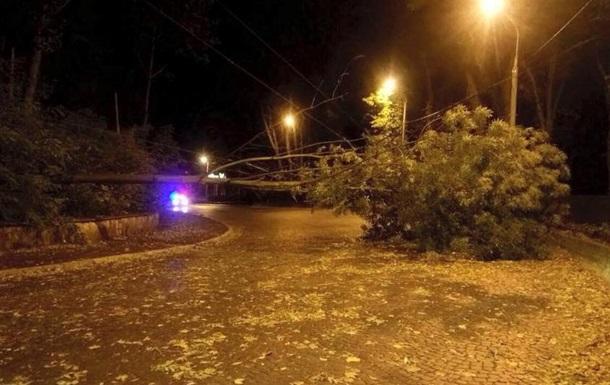 ВоЛьвове бурей повалено 33 дерева, десять улиц без электричества