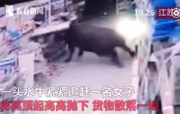 В КНР  буйвол ворвался всупермаркет иранил 6 человек