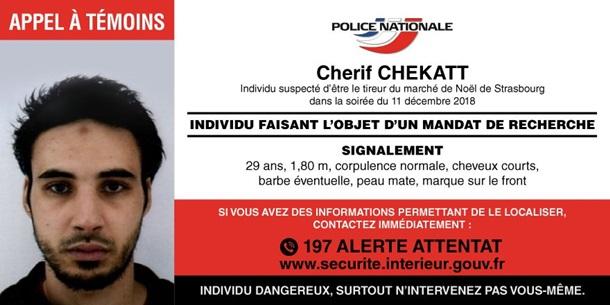 Страсбургского стрелка убили вовремя полицейской операции