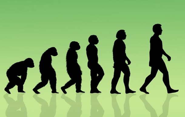 Пару  картинок про эволюцию :-) Хулиганство