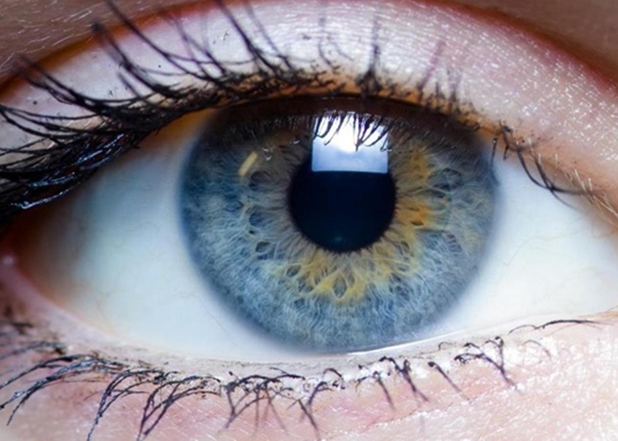 Глаза при употреблении марихуаны конопля девушки на стол