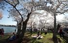 Выбраться на природу. Лучшие места для пикника в Киеве и за городом