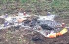 В Одесской области иностранцы подозреваются в ритуальном убийстве