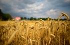 В Україні зібрали 58 млн тонн зернових