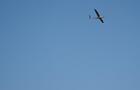 В Украине испытали новейшие дроны-невидимки