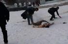 В России уволенный чиновник совершил акт самосожжения