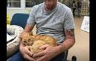 Кот вернулся к хозяину после 14 лет скитаний