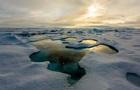Учені виявили в Арктиці рекордну концентрацію мікропластику