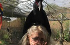 Мережу здивував гігантський папуга, який сів на дівчину