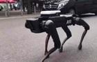 Boston Dynamics вигуляли робота-собаку в Ганновері