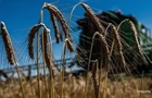 Засуха не вплине на врожай - Мінагрополітики