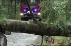 В Польше ураган убил заместителя мэра города