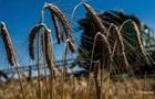 Аграрії намолотили перший мільйон тонн зерна