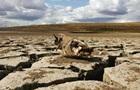 Без воды из Днепра. Последствия засухи в Крыму