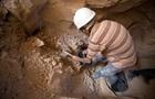 У Єгипті знайшли 8 млн мумій собак