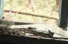 При взрыве в Марьинке пострадали два человека