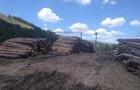 Фискальная служба проверит экспортеров леса