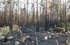 У Фінляндії рекордна кількість лісових пожеж