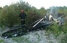 В Италии легкомоторный самолет зацепил провода ЛЭП: есть жертвы
