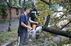Негода в Києві: повалено понад 200 дерев і п ять опор ЛЕП