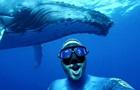 Дайвер снял ролик с горбатым китом