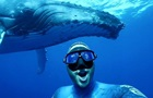 Дайвер зняв ролик з горбатим китом