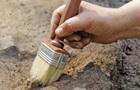 В Кении нашли массовое захоронение возрастом пять тысяч лет