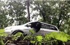 Замкнений в автомобілі ведмідь потрапив на відео
