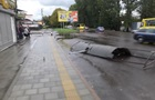 Во Львове ветер снес остановки транспорта