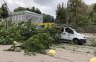 В Одесі вітер валить дерева