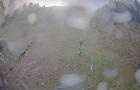 У високогір ї Карпат випав сніг