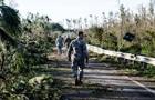 В США число жертв урагана Майкл достигло 33 человек