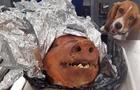 Усміхнений службовий собака прославився в Мережі