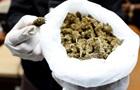 У парламенті Іспанії обговорять легалізацію марихуани