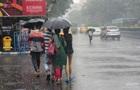 В Индии более 30 человек погибли из-за циклона