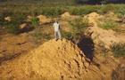 Знайдено  мегаполіс  термітів, помітний з космосу