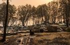 Пожары в Калифорнии: число жертв выросло до 84