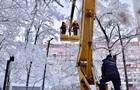 Негода в Україні: знеструмлено 170 населених пунктів