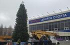 В Одесской области с главной елки похитили гирлянду