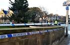 Шотландець розбився на смерть, впавши з різдвяної ялинки