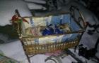 У Тернопільській області на пожежі загинула півторарічна дитина