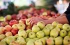 Яблука знижують ризик розвитку раку - Супрун