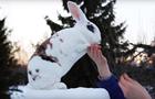 В Финляндии кролик попал в книгу рекордов Гиннесса